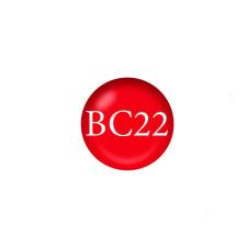 Гель-лак Naomi Boho Chic BC22 6 мл